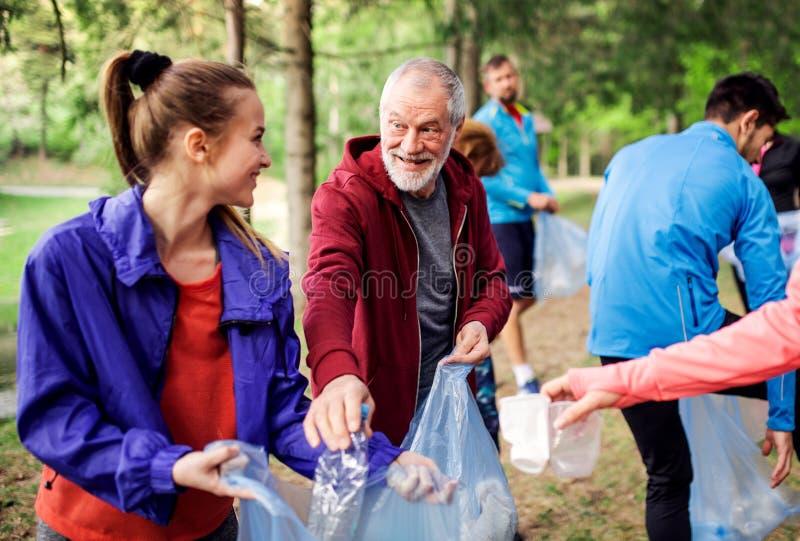 Grupo de gente apta que coge la litera en la naturaleza, un concepto plogging foto de archivo libre de regalías