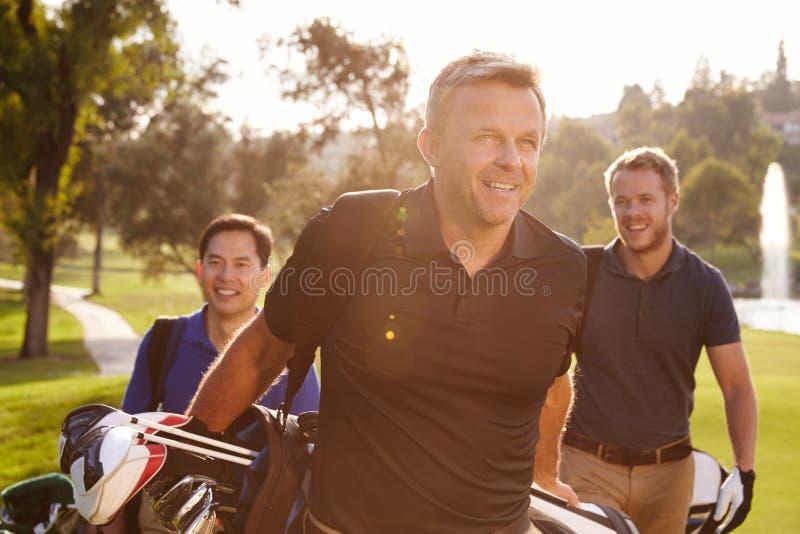 Grupo de golfistas de sexo masculino que caminan a lo largo de bolsos que llevan del espacio abierto fotografía de archivo