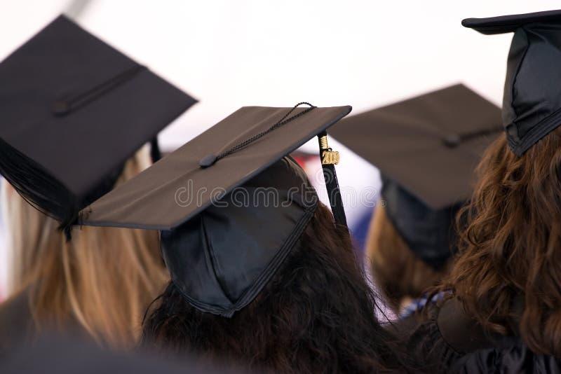 Grupo de graduados foto de stock