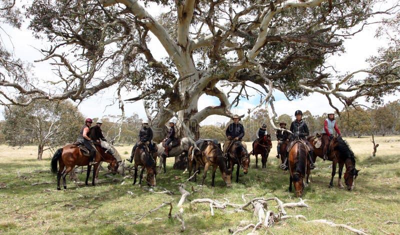 Grupo de horseriders foto de stock royalty free