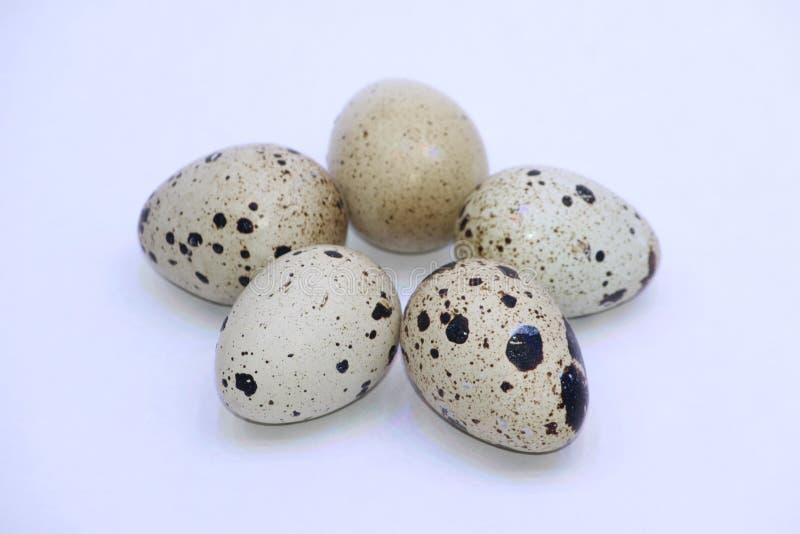 Grupo de huevos de codornices, aislado en el fondo blanco fotografía de archivo libre de regalías