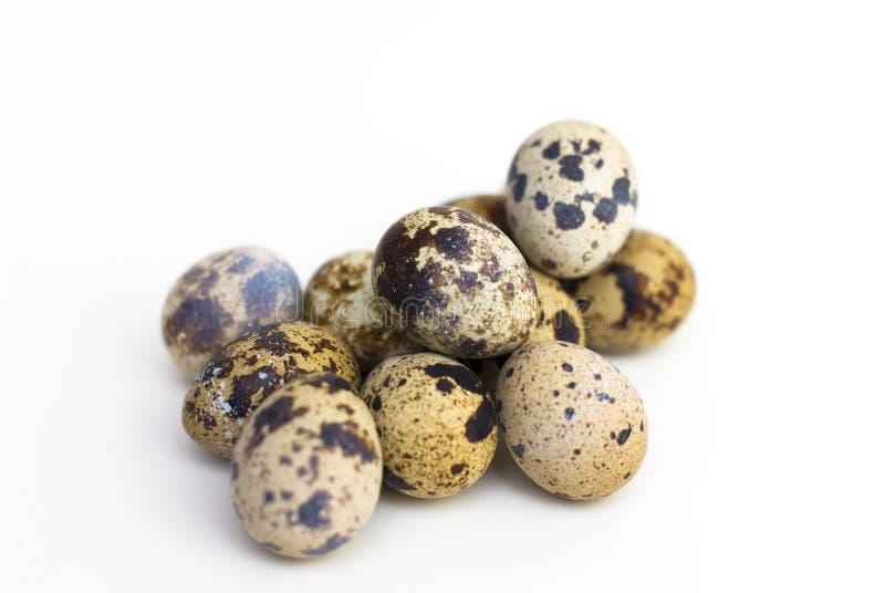 Grupo de huevos de codornices fotos de archivo libres de regalías