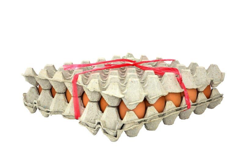 Grupo de huevos frescos en un cartón atado con la cuerda plástica roja para que fácil lleve, aislada en el fondo blanco imagenes de archivo