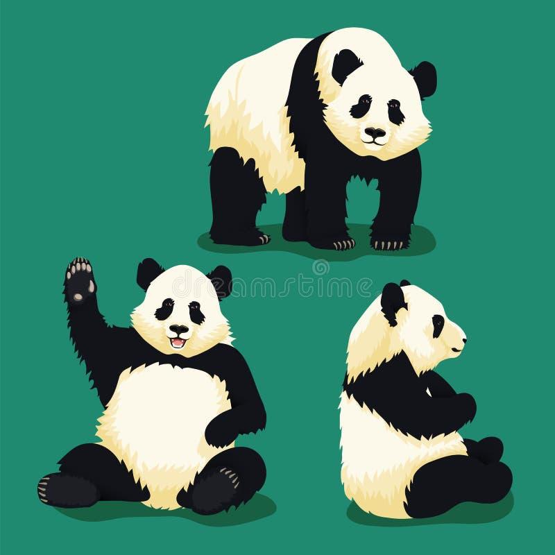 Grupo de ilustrações da panda gigante ilustração stock