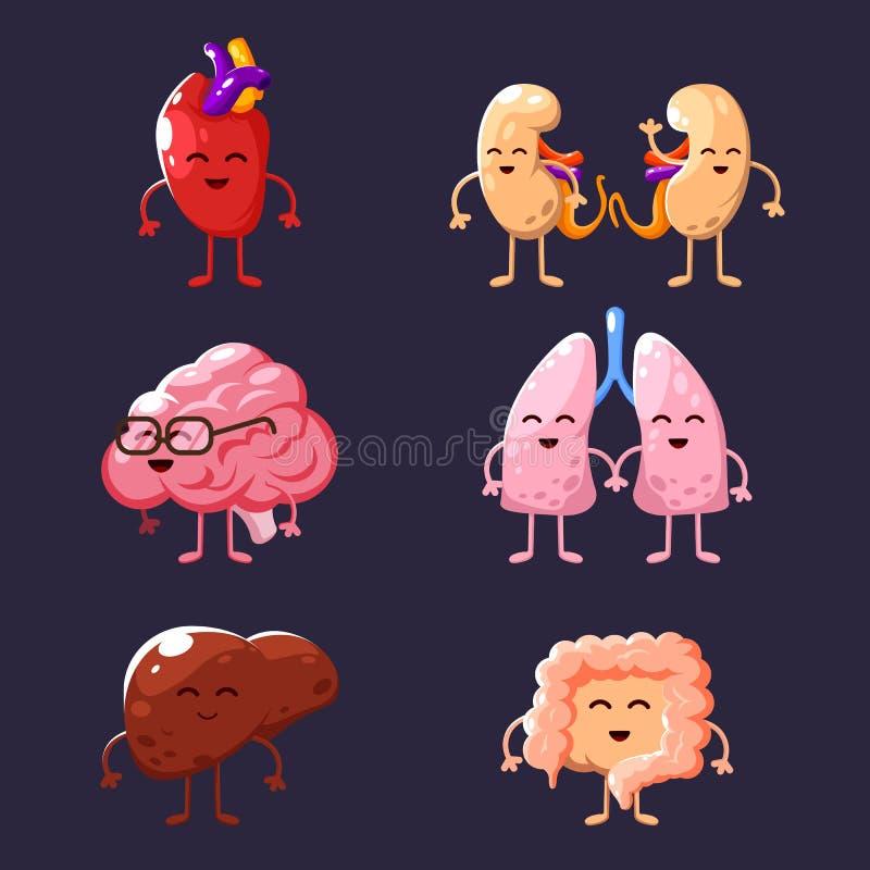 Grupo de ilustrações humanas dos órgãos internos Órgãos engraçados do corpo humano ilustração do vetor