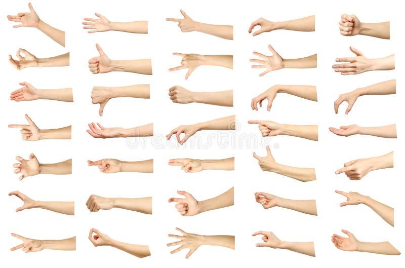 Grupo de imagens múltiplas de gestos de mão caucasianos fêmeas isolado imagem de stock royalty free