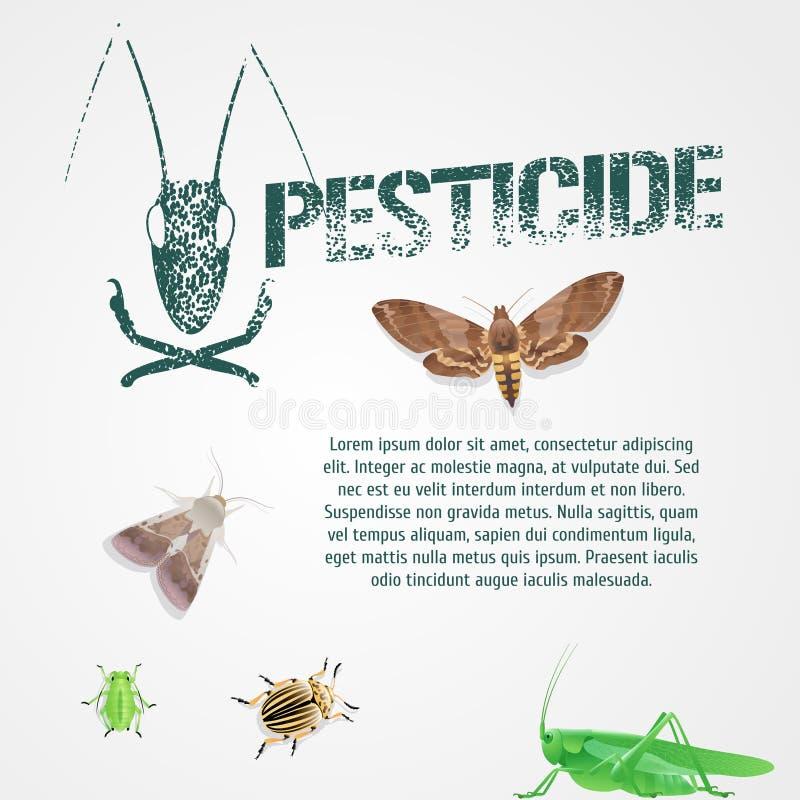 Grupo de insetos realísticos da praga e de ilustração bodycopy do vetor do molde ilustração do vetor