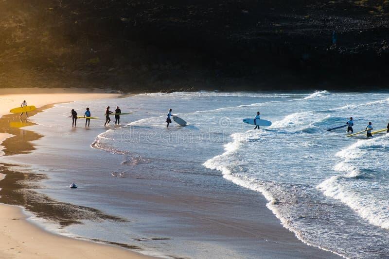 Grupo de jovens em surfar indo da praia fotografia de stock