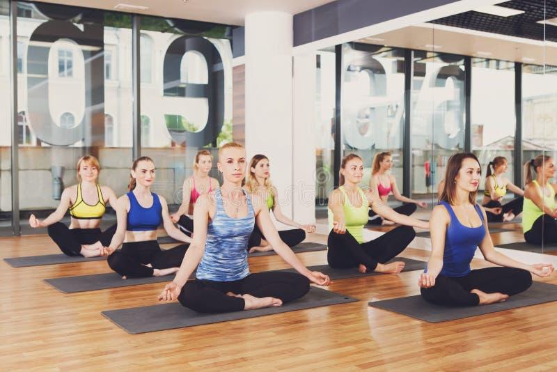 Grupo de jovens mulheres na classe da ioga imagem de stock