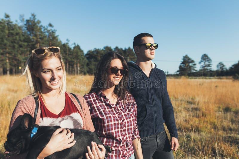 Grupo de jovens que apreciam na caminhada do mounatin foto de stock