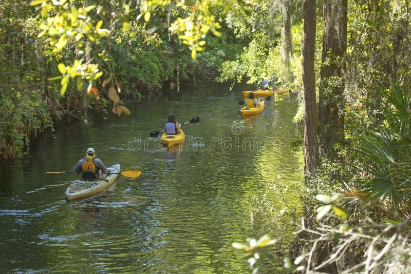 Grupo de kayakers na angra da telha em Kissimmee, Florida foto de stock royalty free