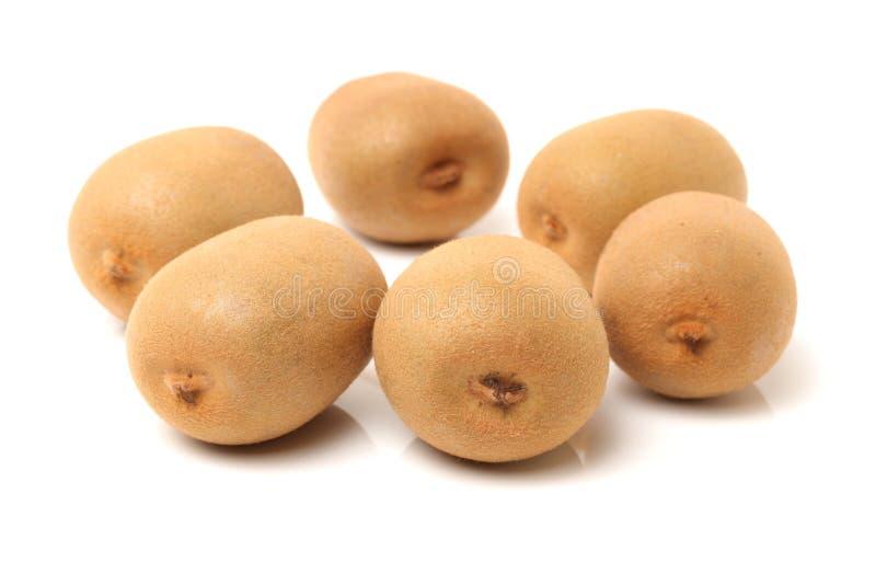 Grupo de kiwifruit imagem de stock royalty free
