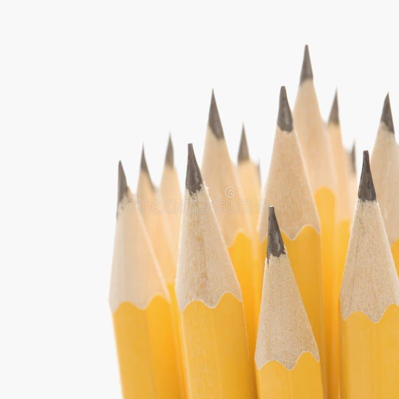 Grupo de lápices sostenidos. fotografía de archivo