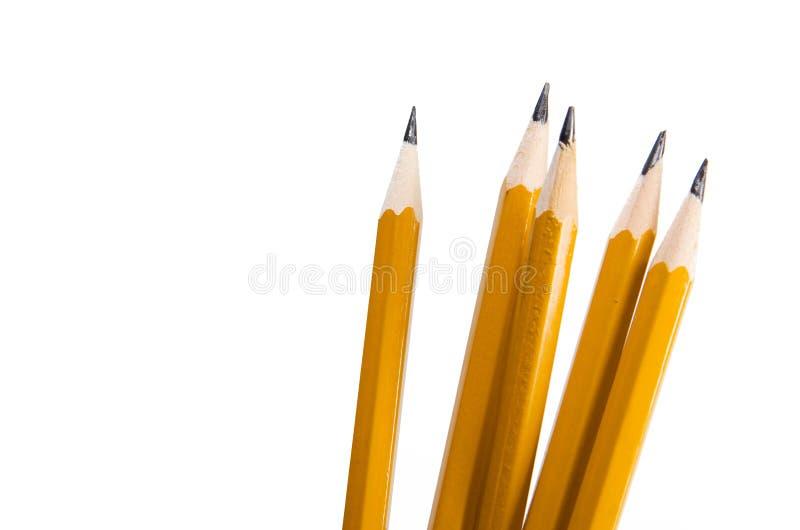 Grupo de lápis fotos de stock royalty free