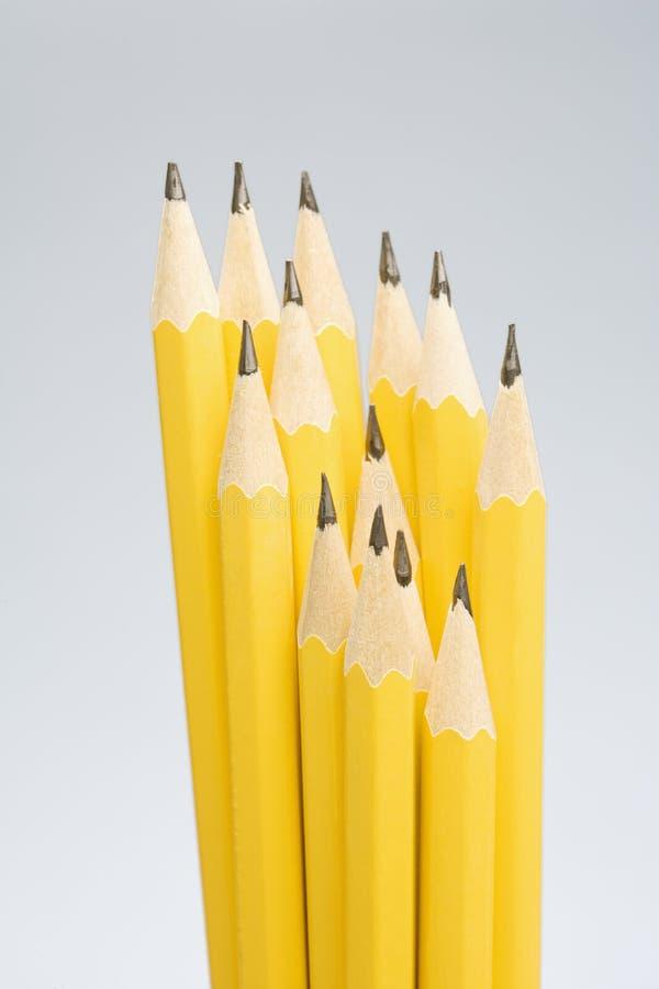 Grupo de lápis afiados. foto de stock royalty free