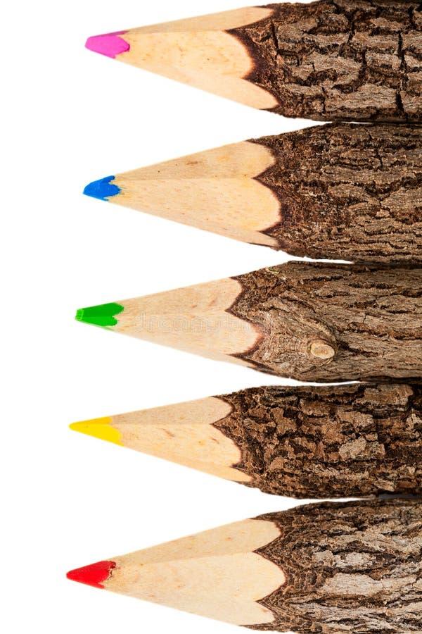 Grupo de lápis de madeira crus, não processados isolados no backg branco fotos de stock