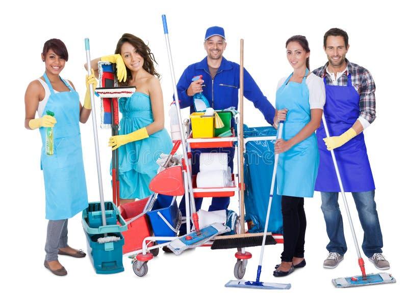 Grupo de líquidos de limpeza profissionais imagens de stock royalty free