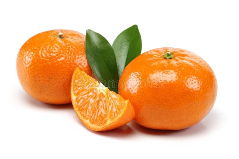 Grupo de la mandarina imagen de archivo libre de regalías
