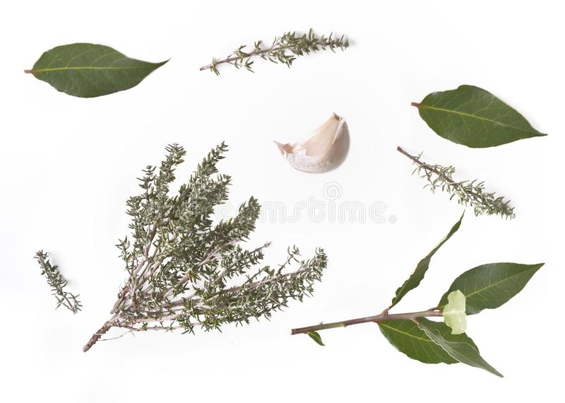 Grupo de la visión superior de hierbas y de ajo aromáticos imagen de archivo libre de regalías