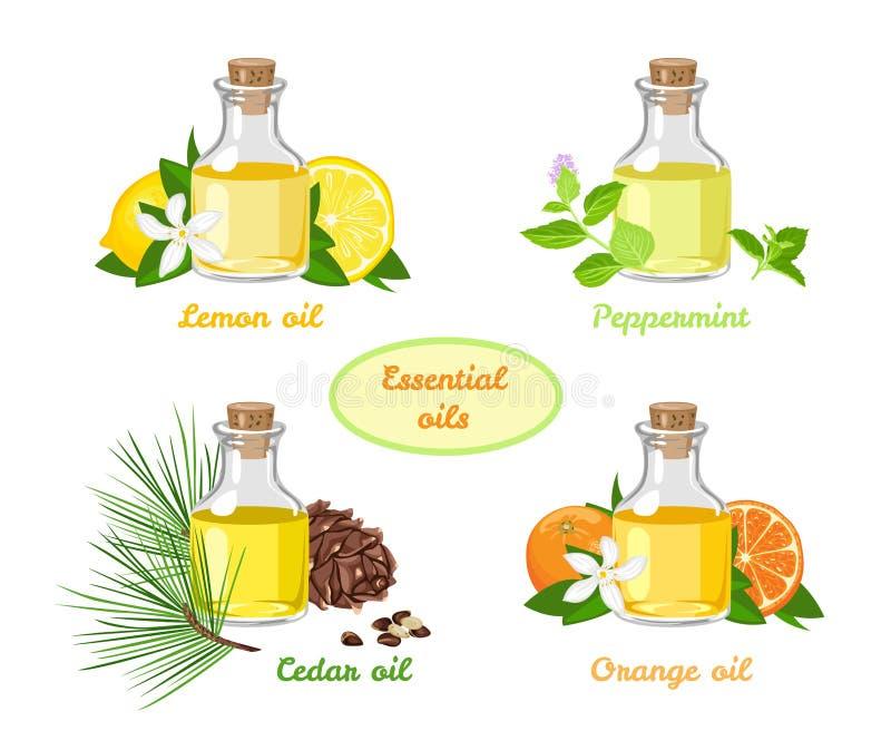 Grupo de ?leos essenciais Limão, hortelã, laranja, óleo aromático do cedro nas garrafas de vidro ilustração royalty free