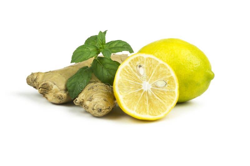 Grupo de limones frescos maduros con hojas de menta y raíz de jengibre aislados en fondo blanco fotografía de archivo libre de regalías