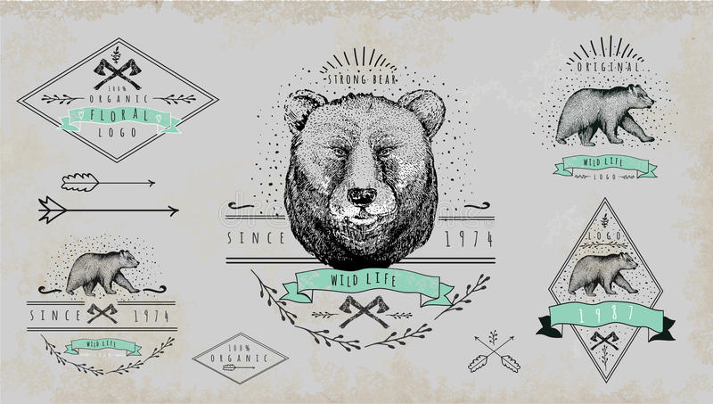 Grupo de logotipo do urso do vintage Projeto para o t-shirt ilustração do vetor