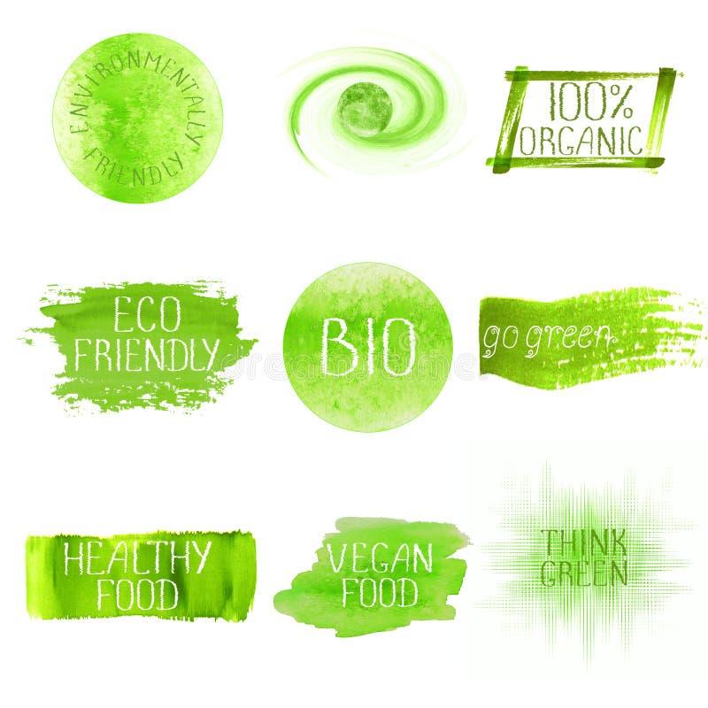 Grupo de logotipo do verde da aquarela ilustração royalty free