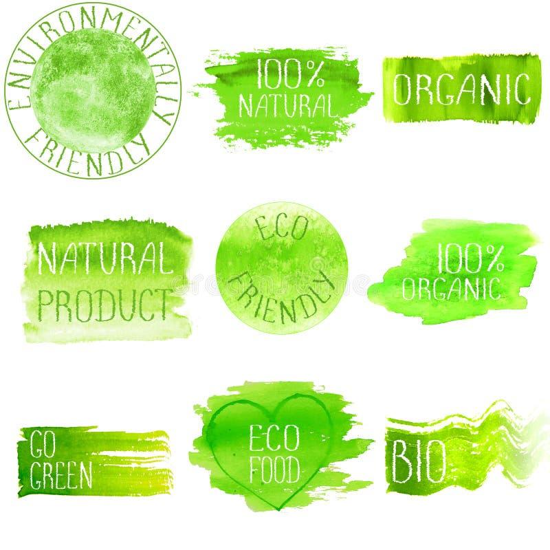 Grupo de logotipo do verde da aquarela ilustração stock