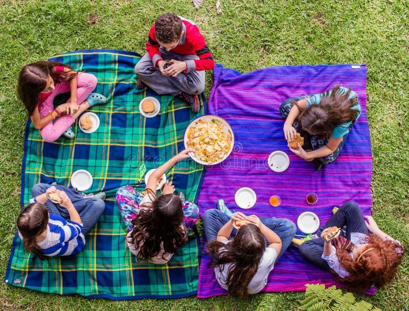 Grupo de los amigos de los niños que hace una comida campestre imágenes de archivo libres de regalías