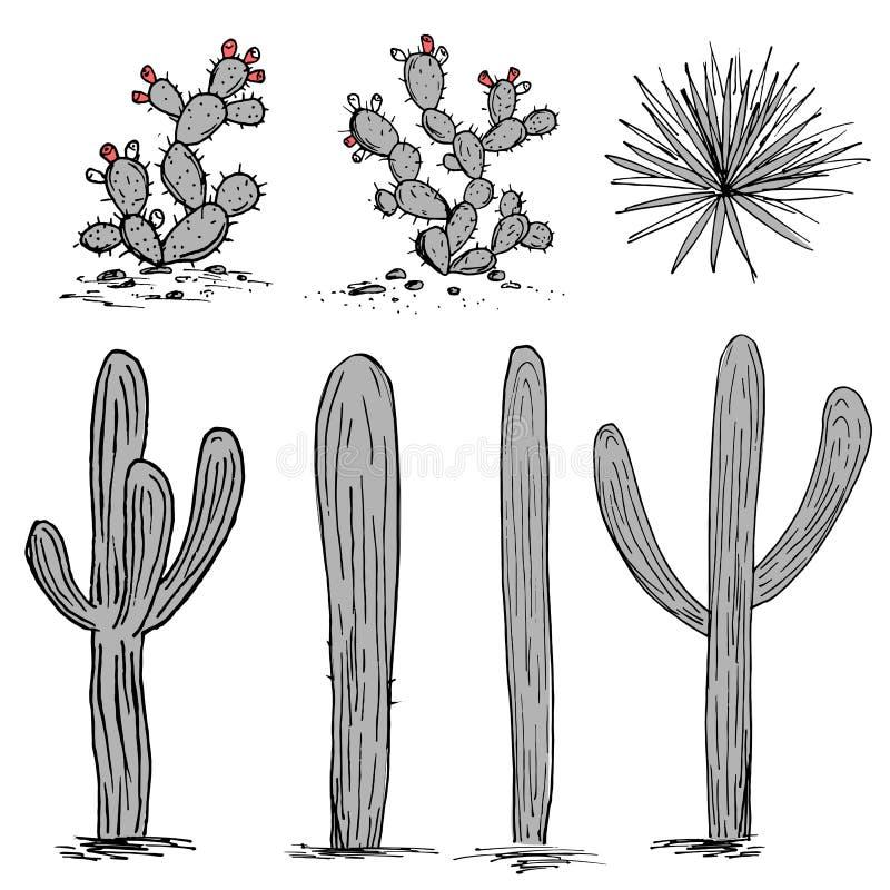Grupo de los cactus Cactus del higo chumbo, agavos azules, y saguaro Vector dibujado mano del cactus Paleta gris y rosada stock de ilustración