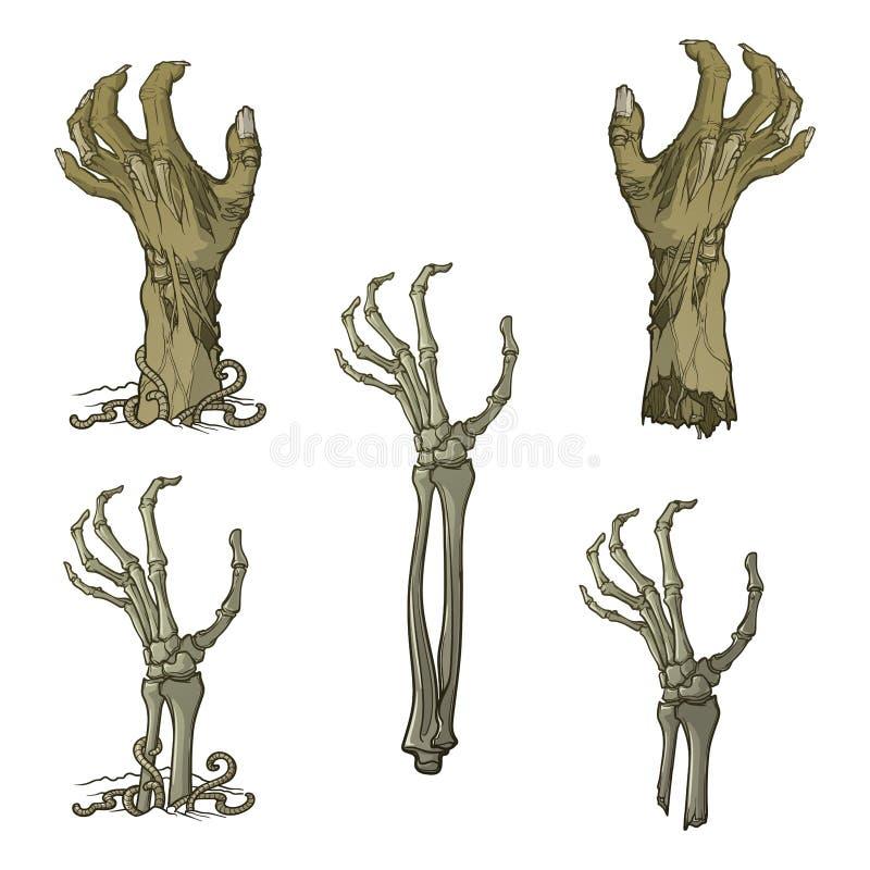 Grupo de mãos descritas vivos do zombi rotting e de mãos de esqueleto que aumentam de debaixo da terra e rasgadas distante pintad ilustração royalty free