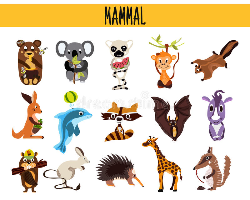 Grupo de mamíferos bonitos dos animais dos desenhos animados que vivem em partes diferentes das florestas do mundo, dos mares e d ilustração stock