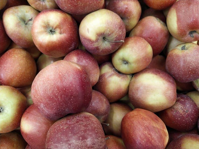 Grupo de manzanas rojas con sus hojas fotos de archivo