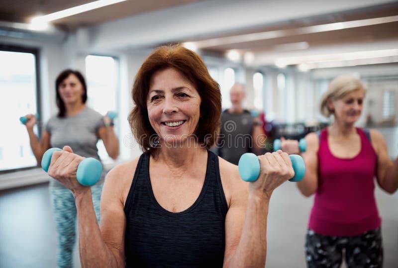 Grupo de mayores alegres en el gimnasio que hace ejercicio con pesas de gimnasia fotos de archivo libres de regalías