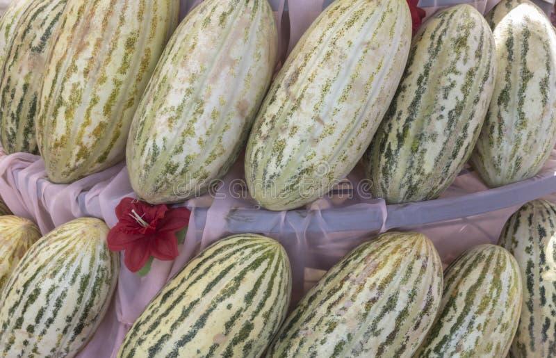 Grupo de melones dulces amarillos maduros frescos Melones del cantalupo para la venta en granja orgánica imagen de archivo