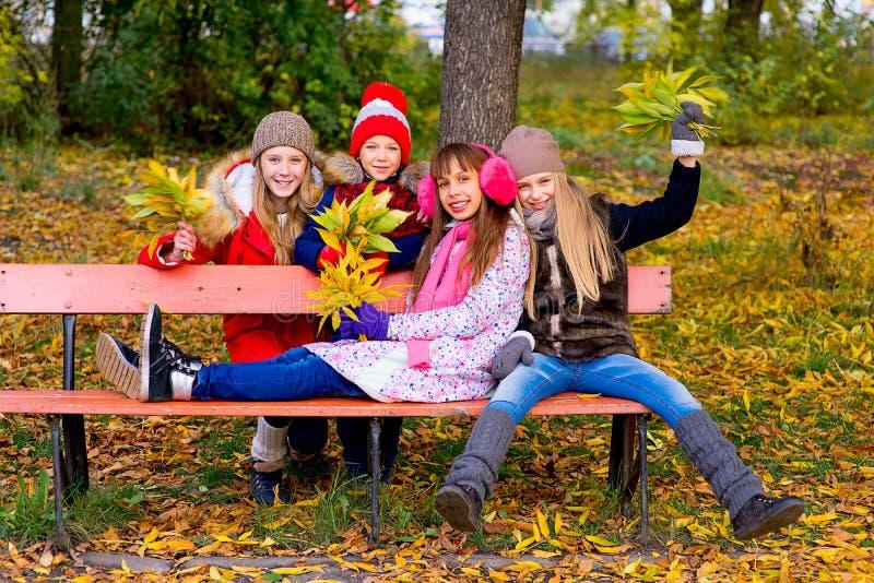 Grupo de meninas no parque do outono com folhas fotos de stock royalty free