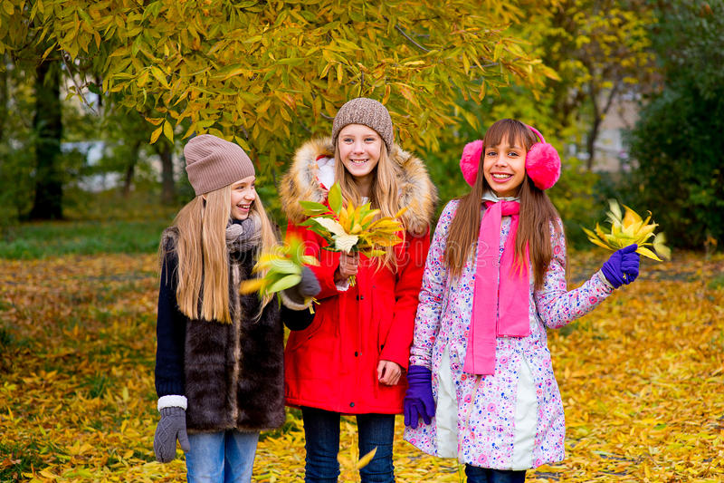 Grupo de meninas no parque do outono com folhas foto de stock royalty free