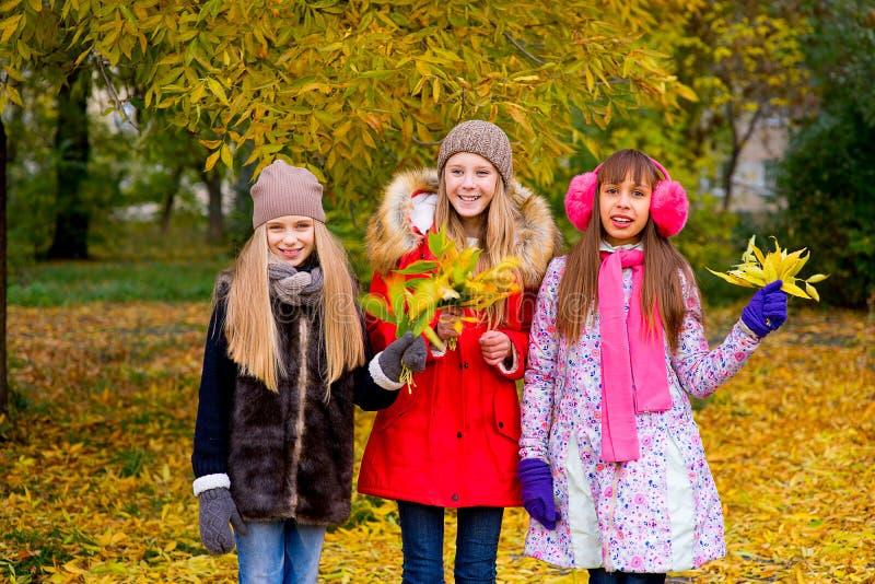 Grupo de meninas no parque do outono com folhas imagem de stock