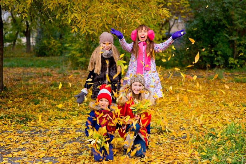Grupo de meninas no parque do outono no brench fotos de stock