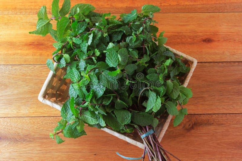 Grupo de menta fresca orgánica verde en cesta sobre el escritorio de madera rústico Hierbabuena aromática con aplicaciones medici foto de archivo libre de regalías