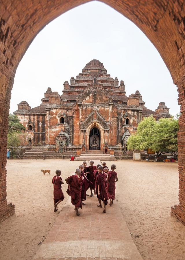 Grupo de monges do principiante que entram felizmente no templo para orações da manhã, Bagan de Dhammayangyi, Myanmar fotografia de stock royalty free
