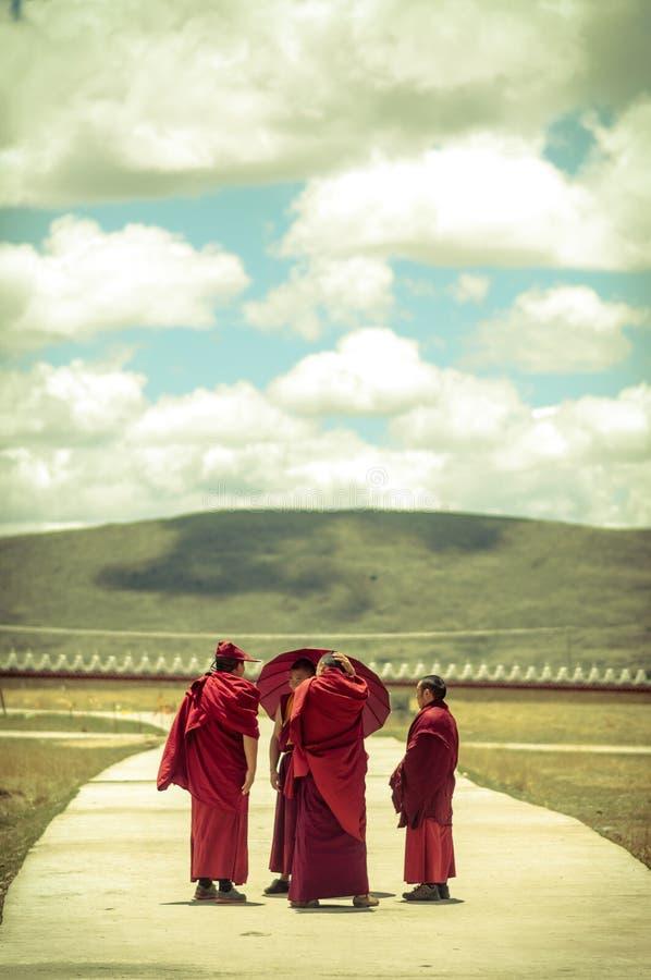 Grupo de monjes tibetanos en Sichuan fotografía de archivo libre de regalías