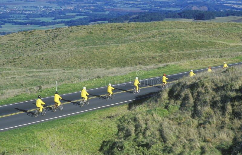 Grupo de montada dos bicyclists foto de stock royalty free