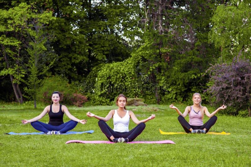 Grupo de mujeres jovenes fangosas sanas hermosas que hacen exersices en la hierba verde en el parque, localizando en actitudes de foto de archivo