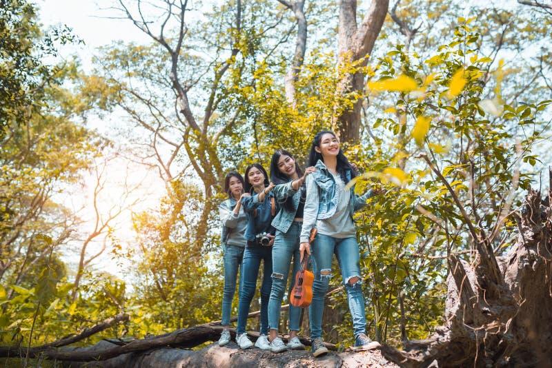 Grupo de mulheres asiáticas que andam para apreciar o curso que trekking fotos de stock
