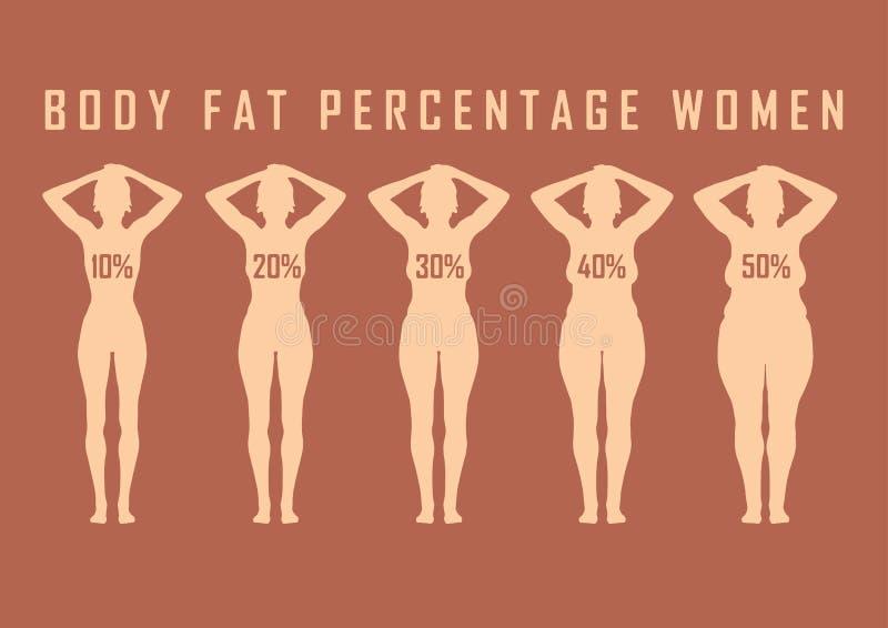 Grupo de mulheres lisas antes e depois da ilustração do vetor da dieta Gordura e menina magro ilustração stock
