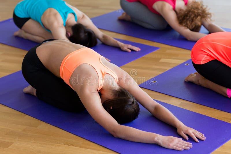 Grupo de mulheres que esticam no gym imagens de stock royalty free