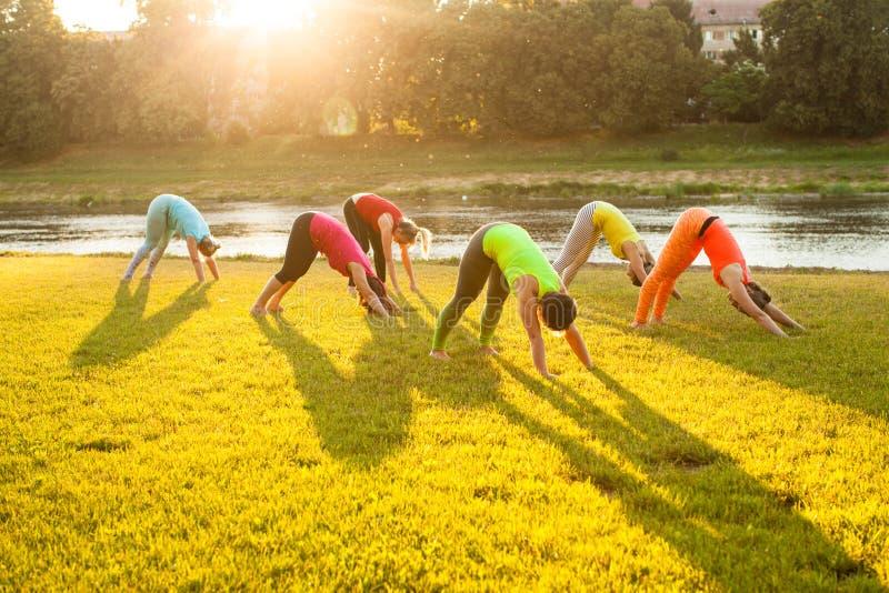 Grupo de mulheres que praticam a ioga na grama imagens de stock