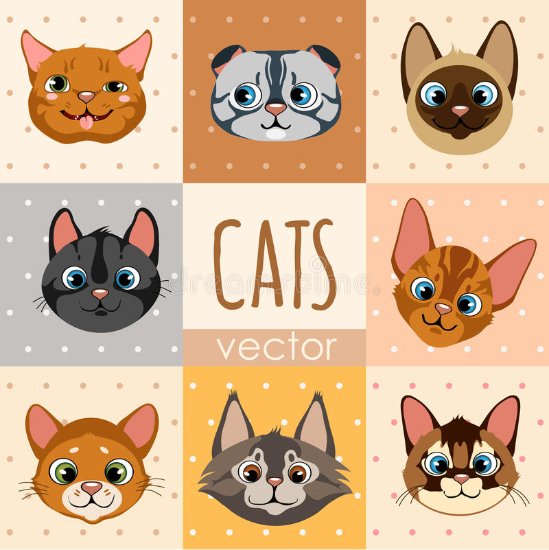 Grupo de oito caras coloridas do gato dos desenhos animados ilustração do vetor