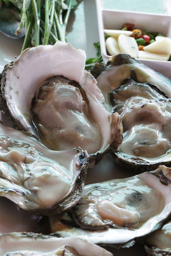 Grupo de ostras grandes pacíficas frescas cruas decoradas/animal ascendente próximo da geleia no restaurante do marisco, ostras c fotografia de stock royalty free